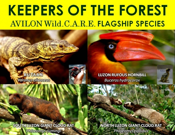 Keepers of the Forest