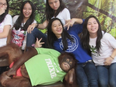 Smile with Trixie the Orangutan